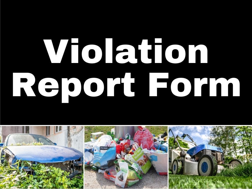 Violation Report Form