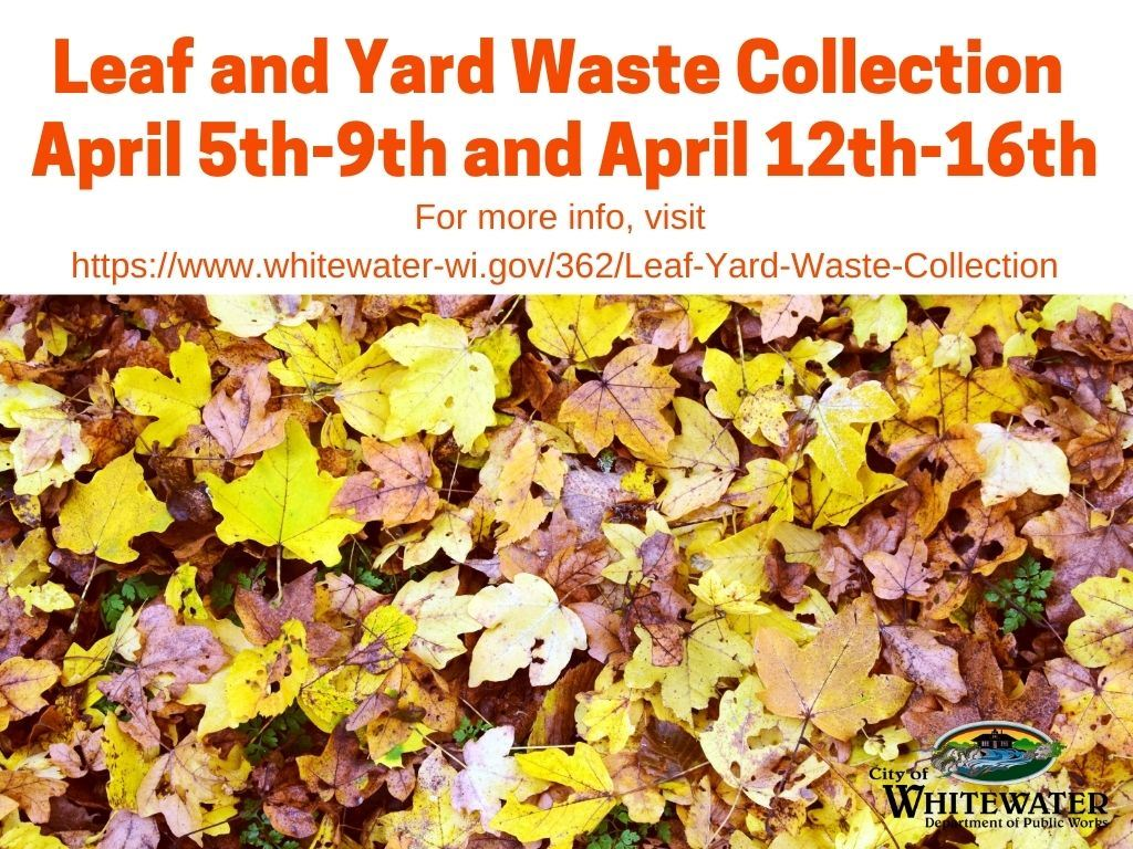 Leaf Yard Collection April 2021